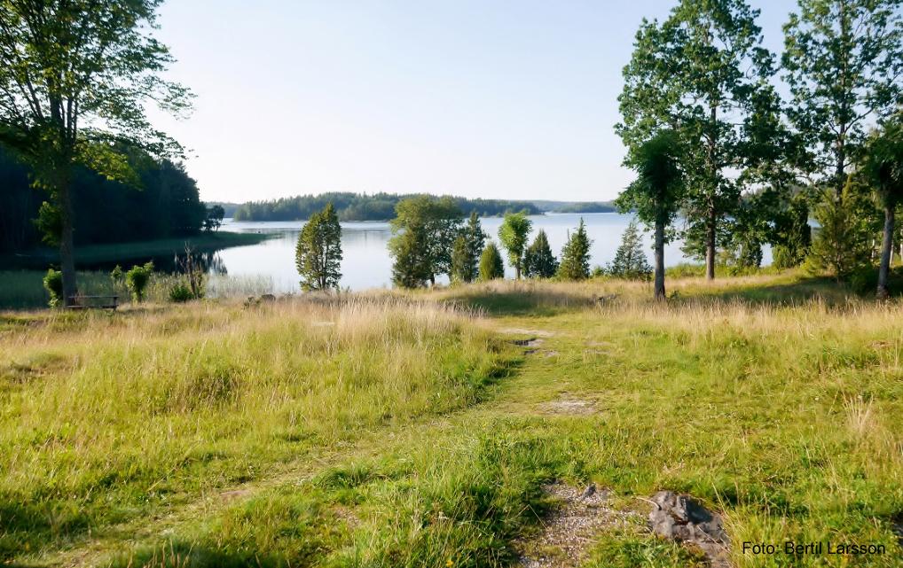 Foto; Bertil Larsson